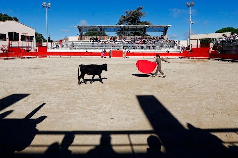 Bullfighting for boys