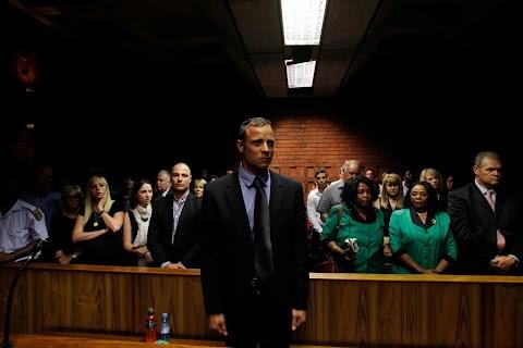 Pistorius murder case