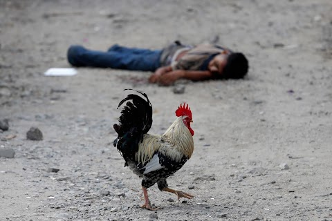 Terror of gang violence drives migrant caravans northward