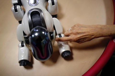 Ageing Japan: Robots' role in future of elder care