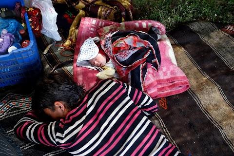 Turkey\u0027s last nomads roam Anatolia