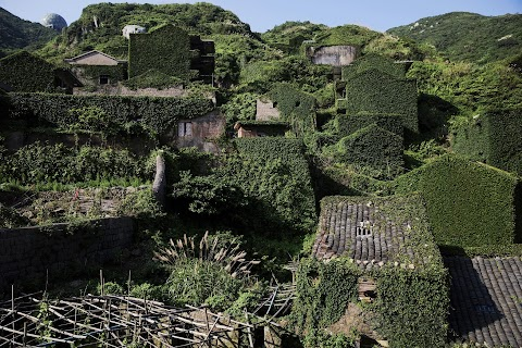 Creeping vines, abandoned village