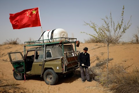 The Great Green Wall: China\u0027s farmers push back the desert one tree at a time