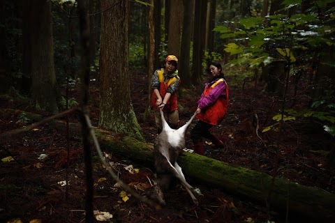 Japan's female hunters