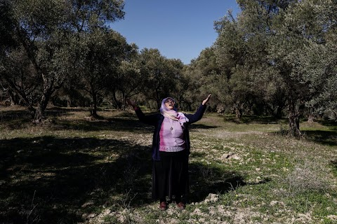 Turkish olive farmer battles to save her land from coal mine