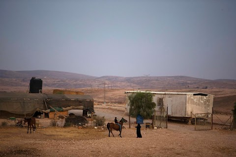 Bedouin of the Negev Desert