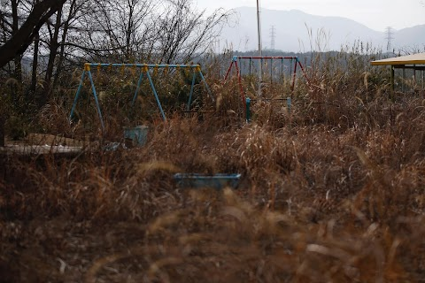 Fukushima: Searching for loved ones