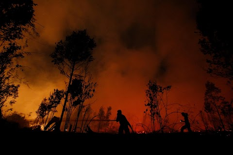 Indonesia\u0027s firefighters on frontline of Borneo\u0027s forest blazes