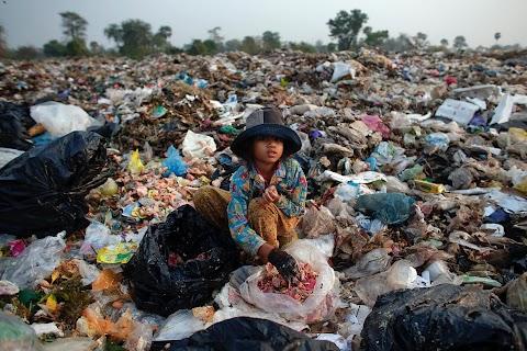 Living on rubbish