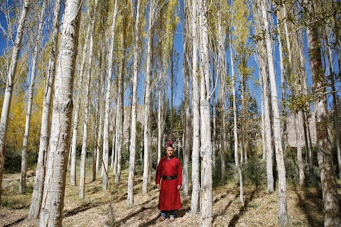 Tradition and tourism in the Indian Himalayas