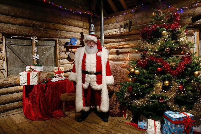 Christmas trees around the world   The Wider Image   Reuters