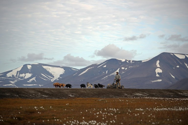 A climate-change frontier in the world's northernmost town by Hannah McKay