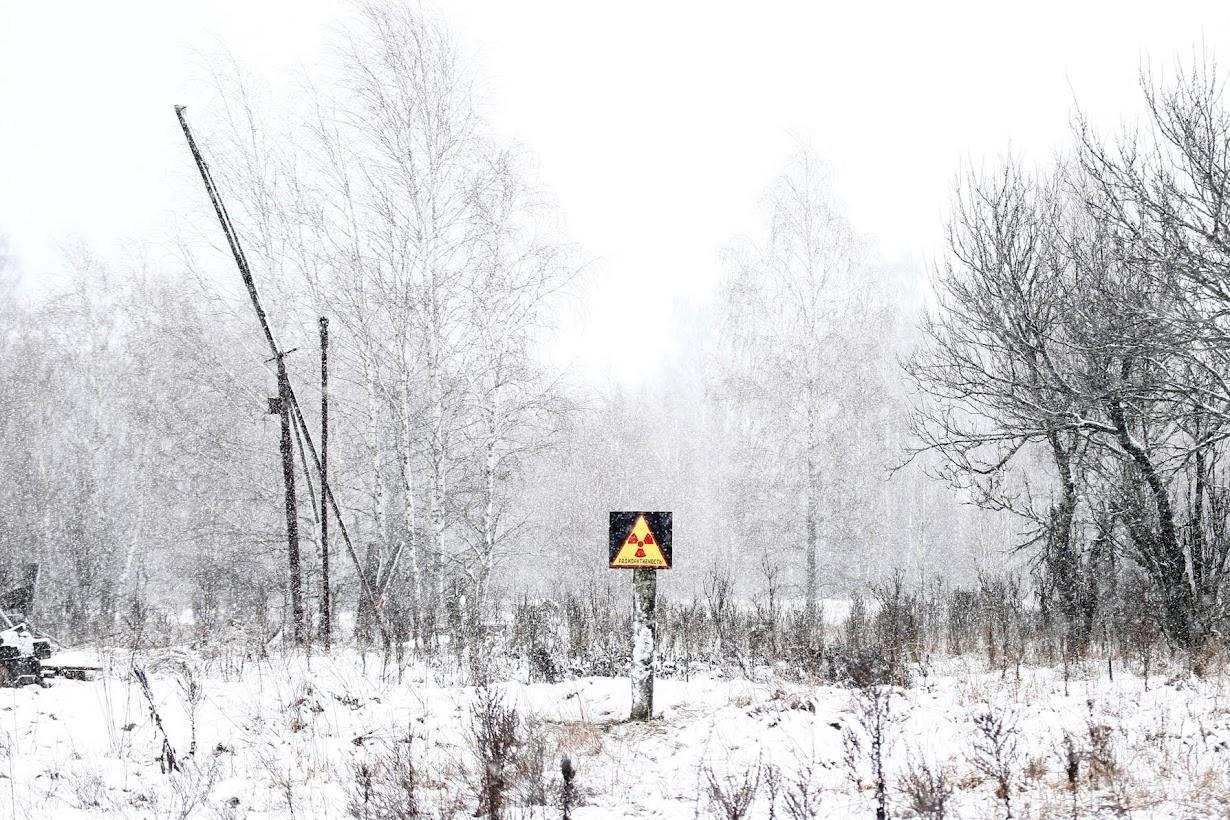 ベラルーシで2月撮影(2016年 ロイター/Vasily Fedosenko)