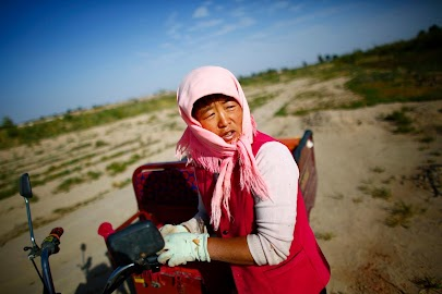 China's parched earth